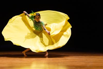 El Ballet Mimbipá presenta 'Un millón de flores'