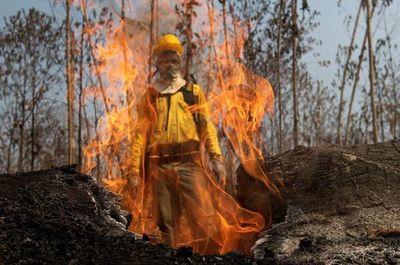 Brasil prohíbe por 60 días el uso de fuego para preparar siembra en Amazonía