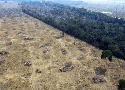 Bolsonaro agita aguas con Europa con repunte de fuegos en la Amazonía