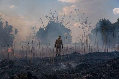 Incendios en Brasil continúan en aumento a pesar de prohibición