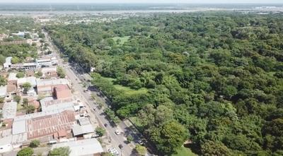 """HOY / Dan """"luz verde"""" al Corredor Vial Botánico: plan contempla plantar 1.200 árboles y trasladar 157 ejemplares"""