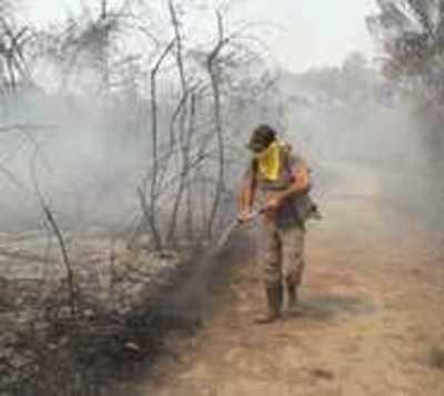 El incendio en el Chaco causó estos daños