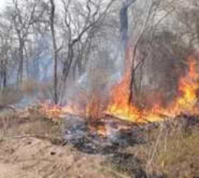 Se reavivó el incendio en el Chaco: Reportan 34 nuevos focos