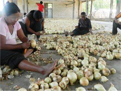 FAO sugiere incluir  la cosmovisión indígena en políticas de desarrollo