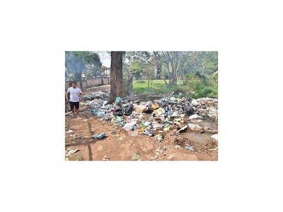 Proyecto sacará información de la basura