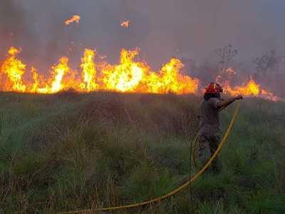 Bomberos y guardias forestales de Itaipu lograron controlar incendio en Reserva Tatí Yupí
