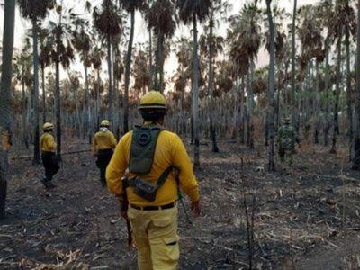 Los incendios forestales también se centran en la Región Oriental del país