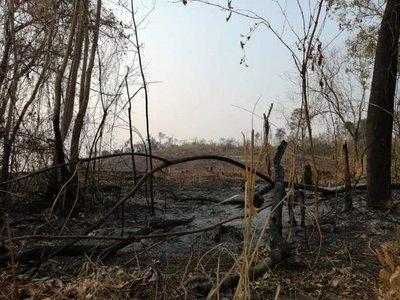 Fuego arrasó con más de 300 hectáreas del Parque Nacional de Caazapá
