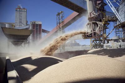 Acuerdo histórico: Argentina ingresará a China con su harina de soja