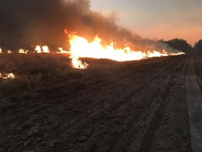 ¨La limpieza del campo con fuego, es una falta de educación¨