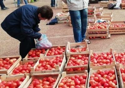 Productores repetirán feria en plaza Ciudad Nueva