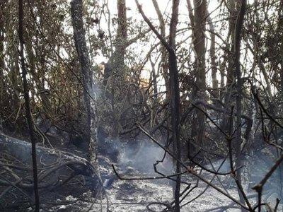 Nuevo incendio afectó a unas 4 hectáreas en Hernandarias