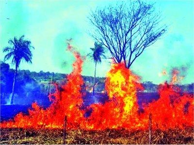 Más de 2.000 focos de calor siguen activos en Paraguay