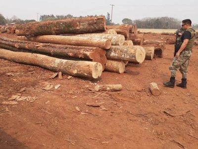 Constatan depredación ambiental en una reservas