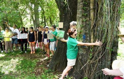 Quieren salvar 164 árboles  antes de obras del Botánico