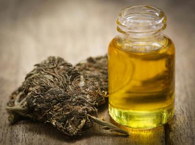 El Gobierno abre concesión de licencias para producir cannabis medicinal