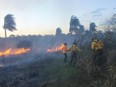 Acciones mutuas contra los incendios