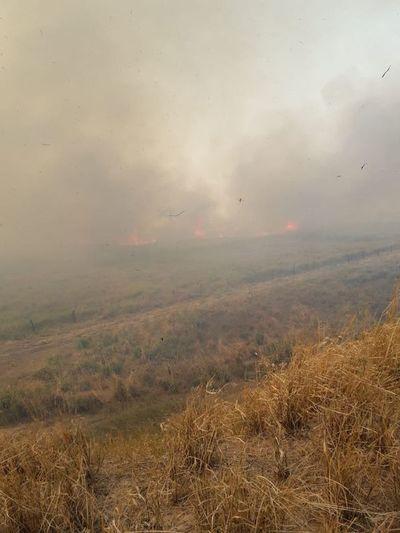 No cesan los incendios en Alto Paraguay