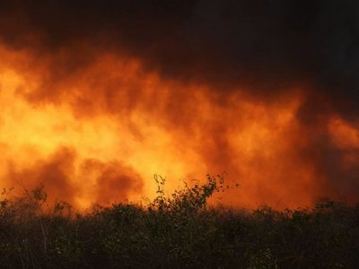 Incontrolable fuego  hace correr a pobladores de zona del Chovoreca