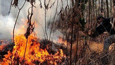 El Chaco en llamas