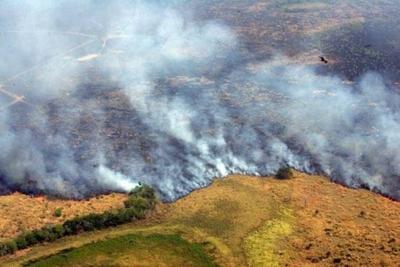 HOY /  Enfermedades cardiacas y pulmonares serán causadas a corto plazo por incendios forestales