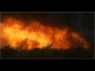 Enfermedades cardiacas y pulmonares serán causadas a corto plazo por incendios forestales