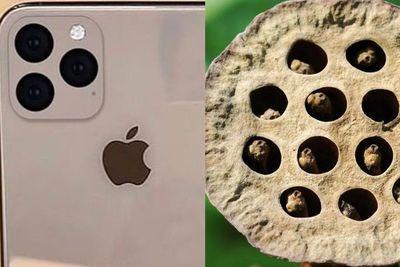Tripofobia: el miedo irracional que provoca el nuevo diseño de iPhone 11