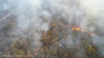 HOY / Devastador incendio en el Chaco no da tregua: urge declarar emergencia nacional