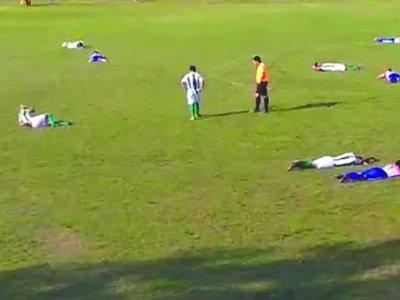 Abejas causaron susto en un juego en Itapúa
