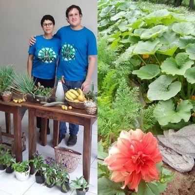En un rincón verde, agricultores urbanos conectan con la naturaleza