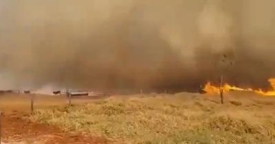 Coordinador de la SEN asegura que incendios están controlados