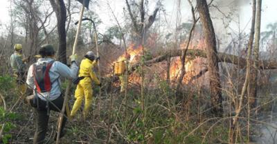 Incendio forestal ya llegó a Laguna Blanca