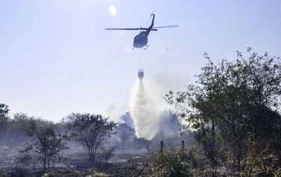 Incendios forestales: más de 15 propietarios en la mira de Infona y Fiscalía