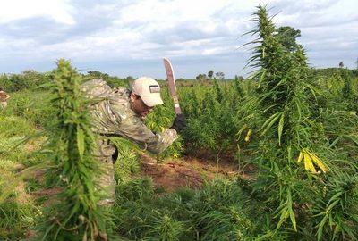 Lucha contra el narcotráfico: los hitos que marcan la actual gestión