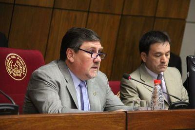 Senadores deberán expedirse sobre el proyecto de Ñande Energía