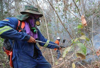 Incendios en Bolivia consumieron 4,1 millones de hectáreas, según ONG