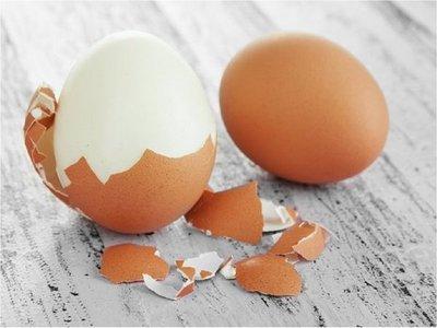"""Cáscara de huevo o espinaca como """"andamios"""" de tejidos en transplantes"""
