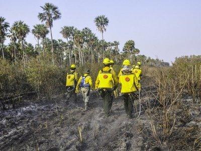 Incendios forestales afectan a 241.000 hectáreas de Alto Paraguay