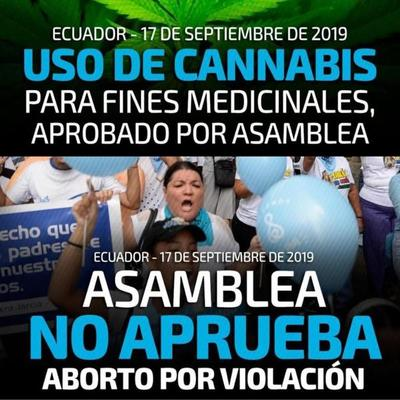 Parlamento de Ecuador rechaza aborto y legaliza cannabis medicinal