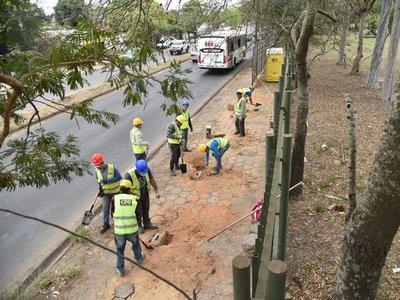 MOPC continuará con trabajos en corredor vial botánico