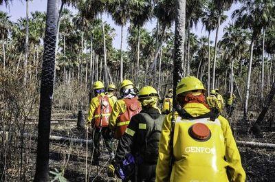 CAF dona USD 100.000 para combatir incendios en el Chaco