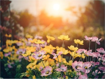 La primavera no empezará este 21 de setiembre