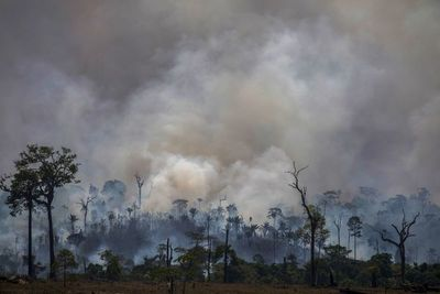 La Amazonía sigue ardiendo antes de la reunión de la ONU