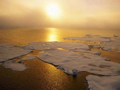Los últimos 5 años han sido los más cálidos jamás registrados
