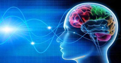 Universidades privadas realizarán I Congreso Interuniversitario sobre Neurociencia
