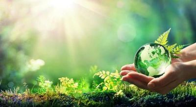 Presentaron propuesta de inversión climática a la banca privada