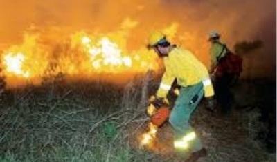 Cazadores causan incendio en reserva bilógica de la UNA
