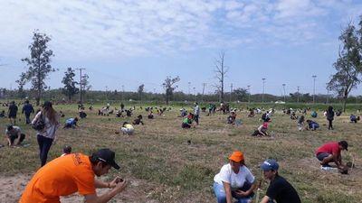 Plantatón sumó 10.000 arbolitos más para el medio ambiente