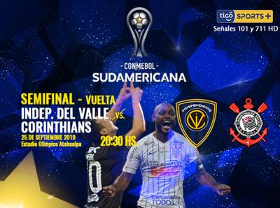 Sale un finalista de la Sudamericana
