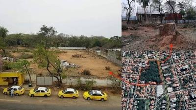HOY / Mario Ferreiro autorizó derribo de 181 frondosos árboles para nuevo súper de Vierci